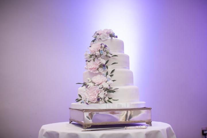 kingston maurward wedding (58a)