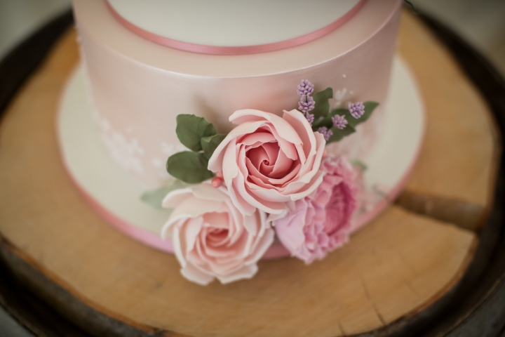 oborne country wedding (59)